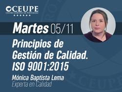 Principios de Gestión de Calidad. ISO 9001:2015