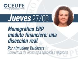 Monográfico ERP modulo financiero: Una disección real