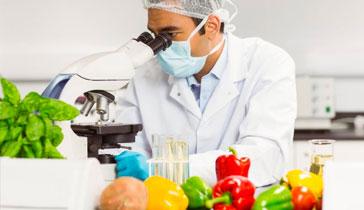Presentación del curso de auditor en seguridad alimentaria