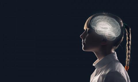Proceso cerebral de pensamiento