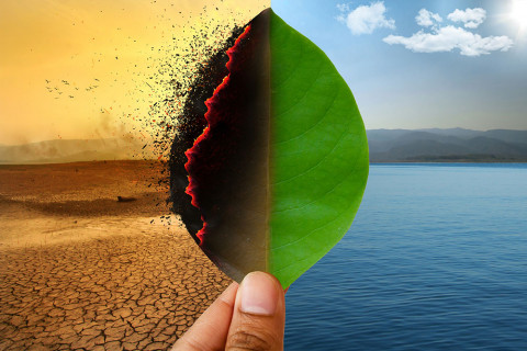 Hoja quemándose como símbolo de agotamiento de recursos