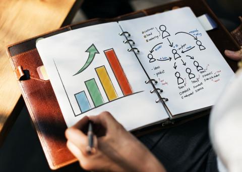 Diseño de una estrategia de negocio