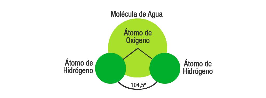 El Agua Sus Características Y Propiedades