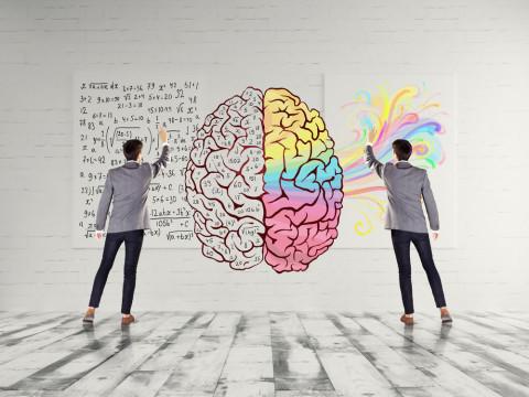 Chico señalando las zonas del cerebro
