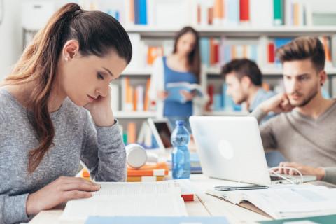 Jóvenes que han decidido estudiar en España en la biblioteca