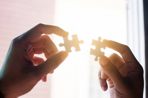 Piezas de un puzzle simbolizando gestión integral