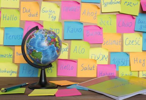 Papeles con palabras en otros idiomas