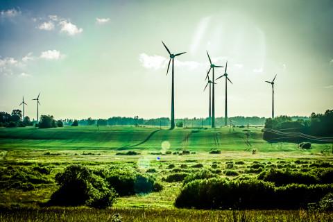 Campo de energía eólica